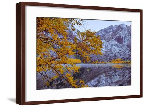 Autumn Reflections Lakeside, Convict Lake Mammoth California-Vincent James-Framed Art Print