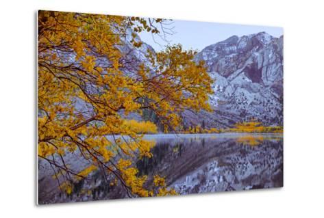 Autumn Reflections Lakeside, Convict Lake Mammoth California-Vincent James-Metal Print
