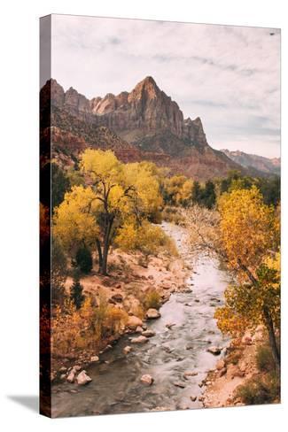 Autmun Virgin River, Zion National Park, Utah-Vincent James-Stretched Canvas Print