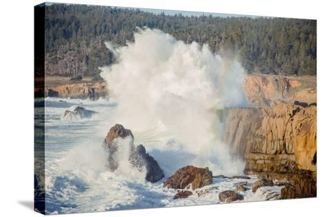 Sonoma Coast and Waves Crashing, California State Parks, Coast Life-Vincent James-Stretched Canvas Print