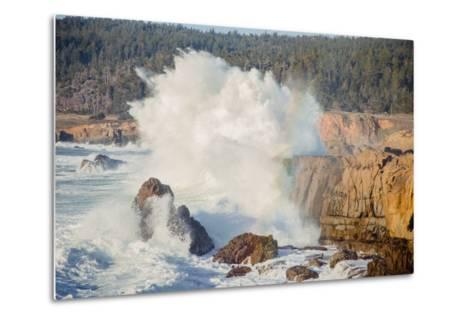 Sonoma Coast and Waves Crashing, California State Parks, Coast Life-Vincent James-Metal Print
