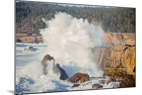 Sonoma Coast and Waves Crashing, California State Parks, Coast Life-Vincent James-Mounted Photographic Print