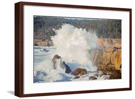 Sonoma Coast and Waves Crashing, California State Parks, Coast Life-Vincent James-Framed Art Print