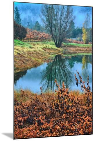 Autumn Pond Reflections, Calistoga, Napa Valley California-Vincent James-Mounted Photographic Print