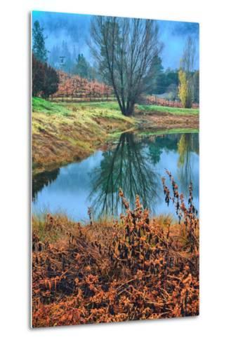 Autumn Pond Reflections, Calistoga, Napa Valley California-Vincent James-Metal Print