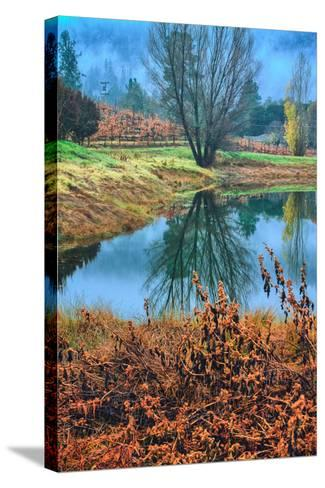 Autumn Pond Reflections, Calistoga, Napa Valley California-Vincent James-Stretched Canvas Print