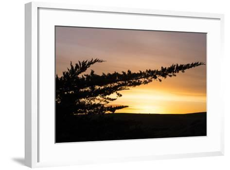 Magical Morning Sun and Silhouette, Dillon Beach, Marin County Bay Area-Vincent James-Framed Art Print