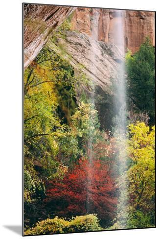 Autumn in Zion Canyon, Southwest, Utah, National Parks-Vincent James-Mounted Photographic Print