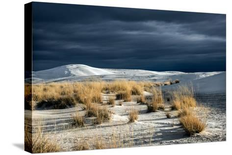 Barren Desert Landscape with Grasses under a Blue Sky-Jody Miller-Stretched Canvas Print