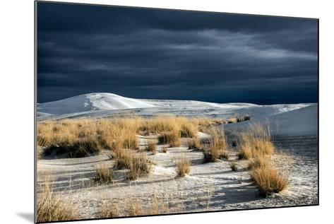 Barren Desert Landscape with Grasses under a Blue Sky-Jody Miller-Mounted Photographic Print