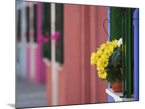 Flowerpot on Window Ledge and Multicolored Buidings, Burano, Italy-Adam Jones-Mounted Photographic Print