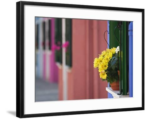 Flowerpot on Window Ledge and Multicolored Buidings, Burano, Italy-Adam Jones-Framed Art Print