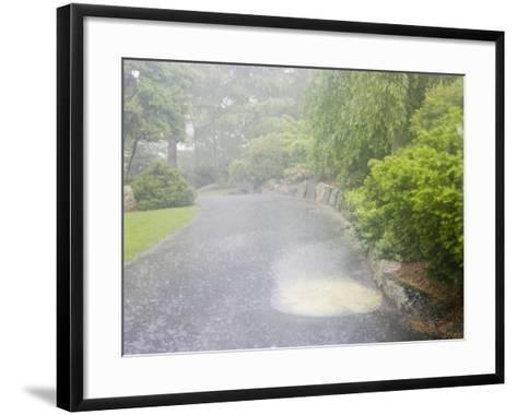 Evaporation Series - Rain Stage (Image 1 of 3)--Framed Art Print