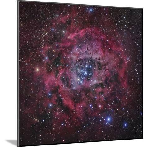 The Rosette Nebula in Monoceros-Robert Gendler-Mounted Photographic Print