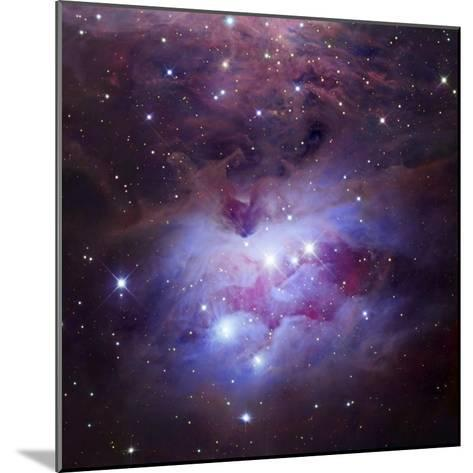 Ngc 1973-75-77, Complex Nebula in Orion-Robert Gendler-Mounted Photographic Print