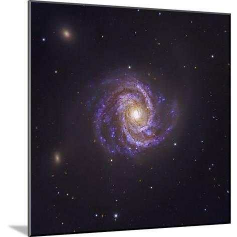 The Spiral Galaxy M100 and Supernova Sn2006X-Robert Gendler-Mounted Photographic Print