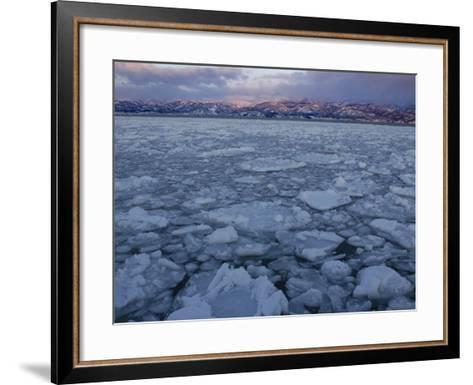 Winter Sea Ice Off Hokkaido Island, Japan-Tom Walker-Framed Art Print