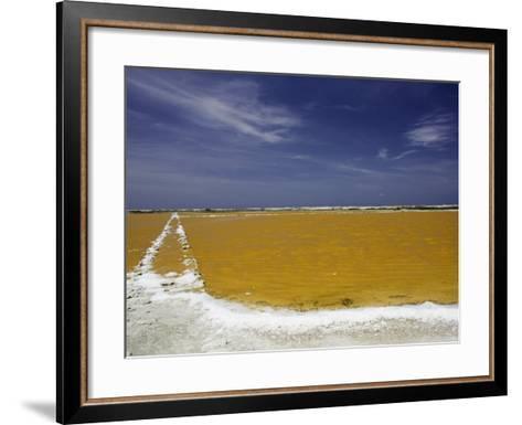 Salt Crusted Shoreline of a Salt Pan Near Lac Bay, Bonaire, Netherlands Antilles, Caribbean-David Fleetham-Framed Art Print