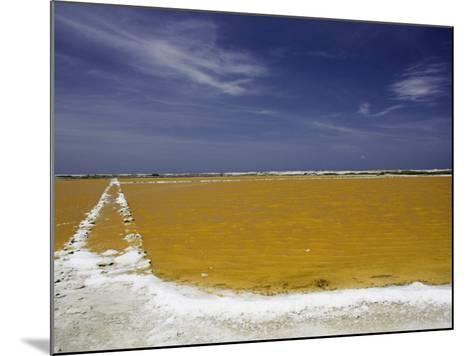 Salt Crusted Shoreline of a Salt Pan Near Lac Bay, Bonaire, Netherlands Antilles, Caribbean-David Fleetham-Mounted Photographic Print