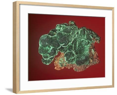 Malachite, Tsumeb Mine, Africa-Mark Schneider-Framed Art Print