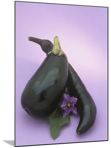 Eggplants and their Leaf and Flower (Solanum Melongena)-Wally Eberhart-Mounted Photographic Print