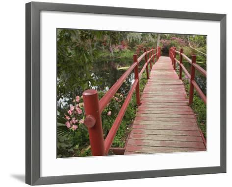 Red Bridge over a Pond, Magnolia Plantation, Charleston, South Carolina, USA-Adam Jones-Framed Art Print