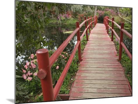 Red Bridge over a Pond, Magnolia Plantation, Charleston, South Carolina, USA-Adam Jones-Mounted Photographic Print