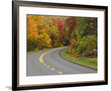 Blue Ridge Parkway Winding Through Autumn Colors, Pisgah National Forest, North Carolina, USA-Adam Jones-Framed Art Print