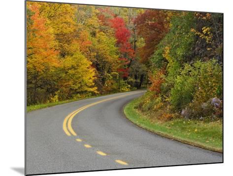 Blue Ridge Parkway Winding Through Autumn Colors, Pisgah National Forest, North Carolina, USA-Adam Jones-Mounted Photographic Print