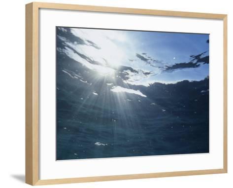 Rays of Sunlight Beneath the Water Surface-David Wrobel-Framed Art Print