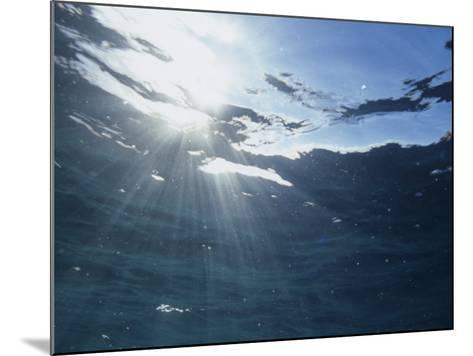 Rays of Sunlight Beneath the Water Surface-David Wrobel-Mounted Photographic Print