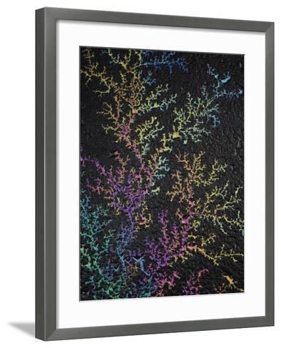 Light Refracted in Motor Oil on Wet Asphalt Pavement Revealing a Rainbow Pattern of Colors-Adam Jones-Framed Art Print