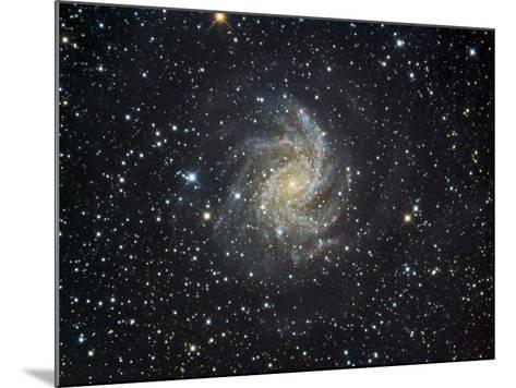 Ngc 6946 Spiral Galaxy in Cepheus-Robert Gendler-Mounted Photographic Print