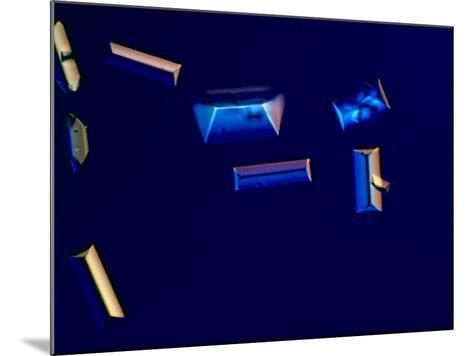 Urine with Triple Phosphate Crystals, Unstained, Dic View-Frederick Skvara-Mounted Photographic Print