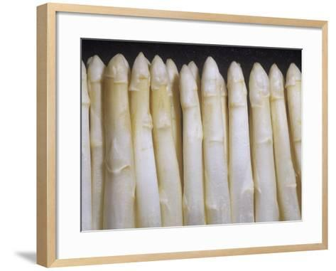 White Asparagus Spargel Variety That Contains No Chlorophyll (Asparagus Officinalis)-Ken Lucas-Framed Art Print