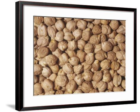 Garbanzo Beans or Chick Peas (Cicer Arietinum). Native to the Middle East-Ken Lucas-Framed Art Print