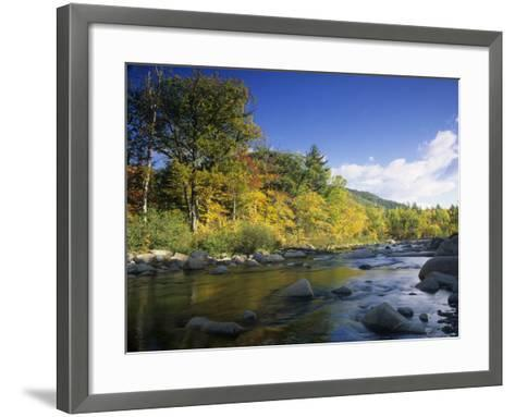 Swift River in the Autumn, White Mountains National Forest, New Hampshire, USA-Adam Jones-Framed Art Print