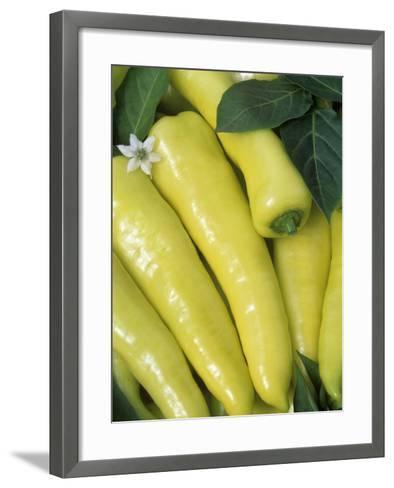 sweet Banana' Sweet Peppers (Capsicum Annuum)-Wally Eberhart-Framed Art Print