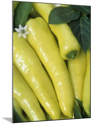 sweet Banana' Sweet Peppers (Capsicum Annuum)-Wally Eberhart-Mounted Photographic Print