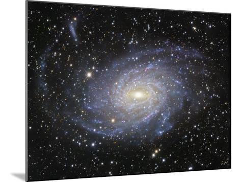 Ngc 6744 Spiral Galaxy in Pavo-Robert Gendler-Mounted Photographic Print