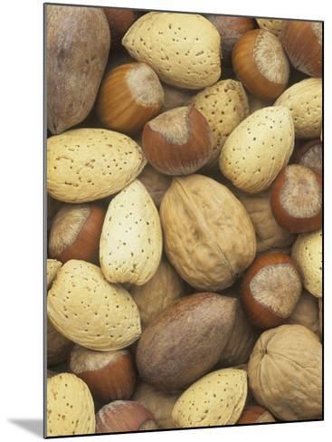 Nuts, Pecan, Walnut, Hazel and Almond-Wally Eberhart-Mounted Photographic Print