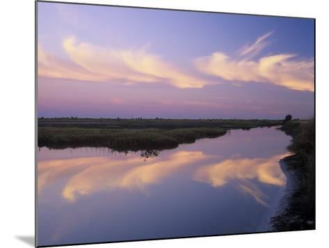Sunrise, Merritt Island National Wildlife Refuge, Florida, USA-Adam Jones-Mounted Photographic Print