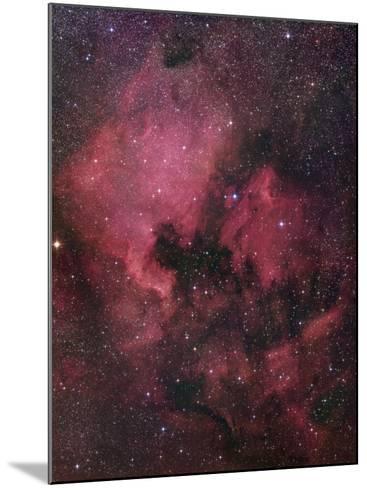 Ngc 7000, the North American Nebula in Cygnus-Robert Gendler-Mounted Photographic Print