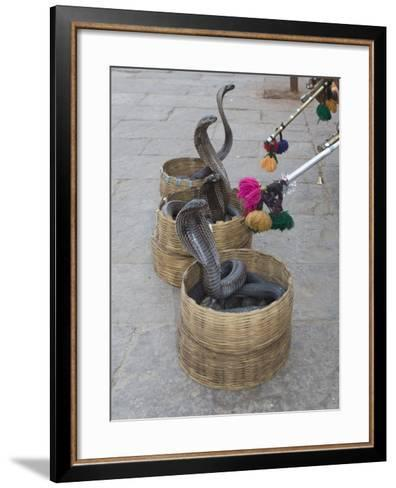 Snake Charmers Baskets Containing Cobras, Jaipur, India-Hal Beral-Framed Art Print