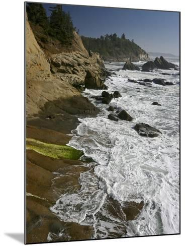 Cape Arago Is a Scenic Headland Jutting into the Pacific Ocean, Oregon, USA-Sean Bagshaw-Mounted Photographic Print