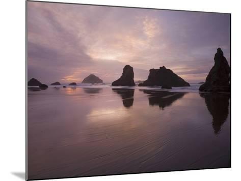 Sea Stacks Along the Oregon Coast-Sean Bagshaw-Mounted Photographic Print