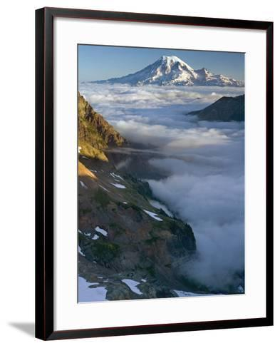 View of Mt. Rainier Above the Clouds from the Goat Rocks Wilderness, Washington, USA-David Cobb-Framed Art Print