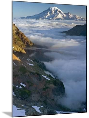 View of Mt. Rainier Above the Clouds from the Goat Rocks Wilderness, Washington, USA-David Cobb-Mounted Photographic Print