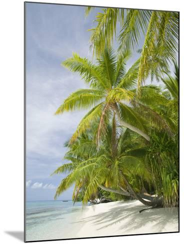 Palms on a Tropical Beach on the Funafuti Atoll in Tuvalu-Ashley Cooper-Mounted Photographic Print