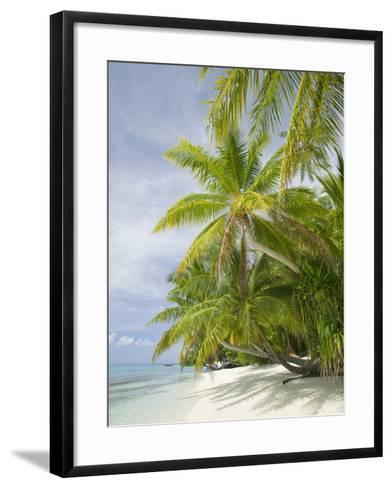 Palms on a Tropical Beach on the Funafuti Atoll in Tuvalu-Ashley Cooper-Framed Art Print